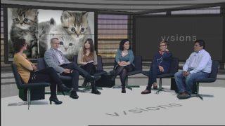 Visions: la gestió dels gats de carrer