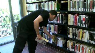 Novel·les històriques: les lectures d'estiu