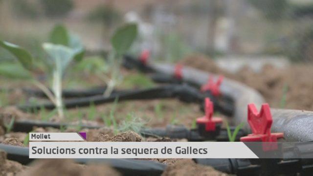 Vallès Visió Notícies 27 de setembre de 2016