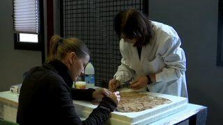 Obres de restauració i conservació al Museu de Montmeló