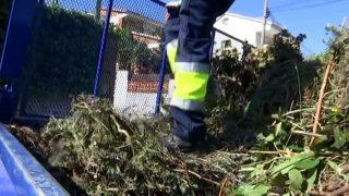 L'Ajuntament de Vallromanes es planteja reciclar els residus de la poda