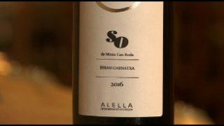 El nou vi del celler de Can Roda