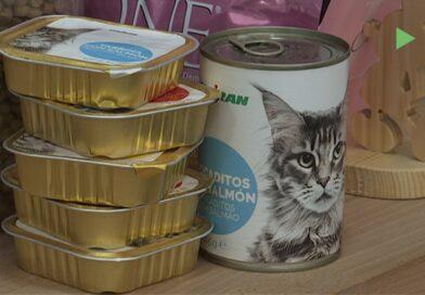 L'entitat Espai Gos engega una recollida d'aliments per a gats